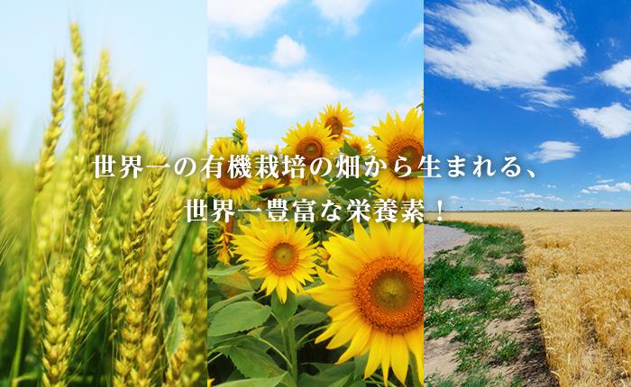 世界一の有機栽培の畑から生まれる、世界一豊富な栄養素!